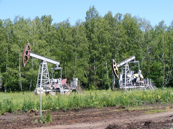 Нефть в башкирии реферат 8704