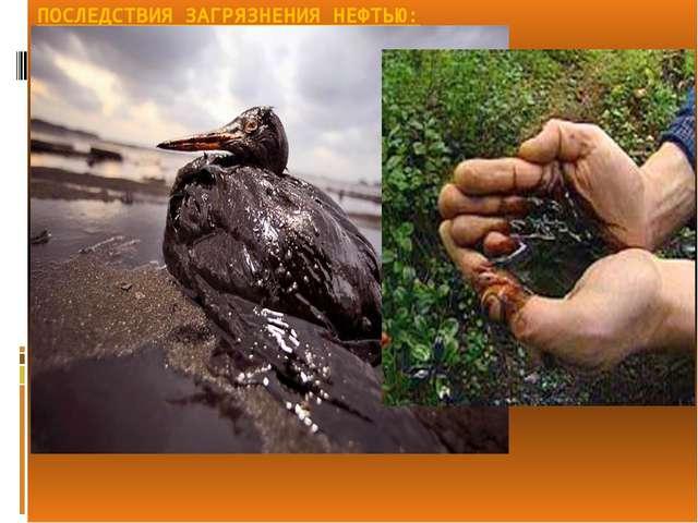 Загрязнение окружающей среды нефтепродуктами реферат 9229